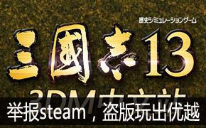 3DM《三国志13》下架玩家举报steam,盗版玩出优越?