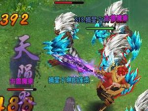 灵域2最新游戏战斗截图