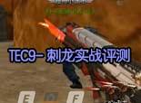 火线精英视频 TEC9刺龙打挑战评测解说