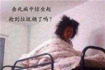 发条乐点:垃圾分类看把上海人给逼成什么样了