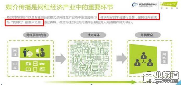 网传网络主播收入排行榜 前十YY占7席 映客榜上无名