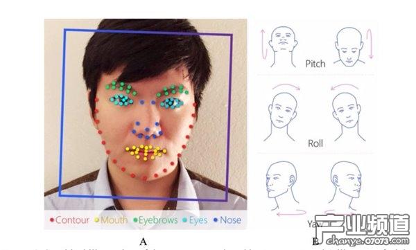 人工智能算法鉴别同性恋:准确率最高达81%