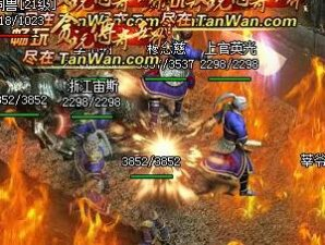 传奇世界游戏战斗截图