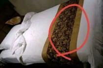 发条乐点:宾馆床上的不明物体有何作用?
