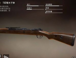 和平精英远程枪械排行 98K才第五